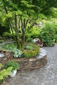 Stone, raised bed....nice way to accent a tree. Planned garden, raised beds with cobblestone makes for less watering and more greenery throughout the year.