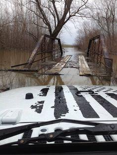 """Bridge"" Derek D's pic from IAJN"