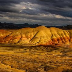 If you think the colorful landscape of John Day Fossil Beds National Monument in #Oregon is interesting just wait until you see whats hidden among the unique rock formations. The erosion that created the #paintedhills and deep ravines also revealed one of the longest records of evolutionary change on the continent. On the parks 14000 acres scientists have uncovered #fossils of plants and animals dating back from 5 million to 44 million years old. If each time period recorded here is a page…