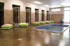 Suites and indoor pool