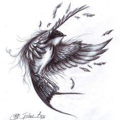 swallow by SvPolarFox.deviantart.com