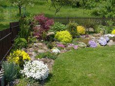 Roh zahrady záři kvetoucími barevnými koberci, pohled od domu musí být úžasně… Stepping Stones, Garden, Outdoor Decor, Plants, Home Decor, Pictures, Stair Risers, Garten, Decoration Home