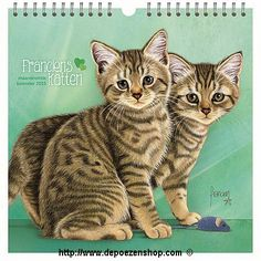 Franciens Katten Maandkalender 2015 #katten #cats