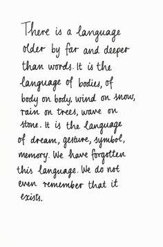 derrick Jensen  a language older than words    via 2wentysix letters
