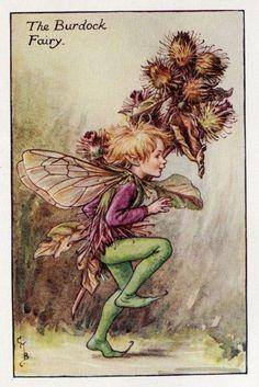Burdock Flower Fairy Vintage Print c1927 Cicely by TheOldMapShop