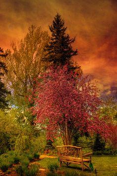 The enchanted garden Reader Rock Garden, Calgary, Alberta, Canada