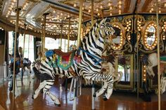 Zebra Carousel Horse Salisbury Nc Poster by Veena Waziri. All posters are professionally printed, packaged, and shipped within 3 - 4 business days. Choose from multiple sizes and hundreds of frame and mat options. North Carolina Attractions, Fair Rides, Painted Pony, Merry Go Round, Carousel Horses, Art Sites, Salisbury, Zebras, Roller Coaster