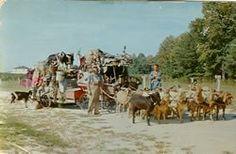The Goat man passing through north Ga