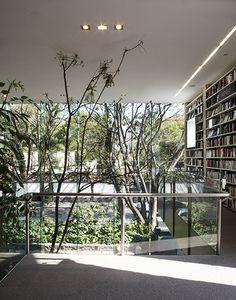 Elena Garro Cultural Center,© Sandra Pereznieto