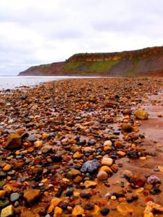 Beautiful Cayton Bay between Filey and Scarborough Yorkshire Day, North Yorkshire, Northern England, Picture Source, Dark Blue Background, Beach Bum, East Coast, United Kingdom, Nature Photography