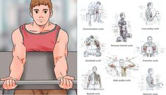 Get Big Arms - 3 Exercises To Build Huge Arms Fast - Bodydulding Gym Workout Chart, Full Body Workout Routine, Huge Biceps, Biceps And Triceps, Deltoid Workout, Dumbbell Workout, Weight Training Workouts, Fast Workouts, Muscle Workouts
