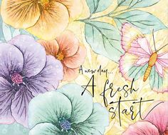 Baby Animal Drawings, Cute Drawings, Watercolor Cards, Watercolor Flowers, Good Day Messages, Decoupage, Positive Art, Birthday Wishes Cards, Beautiful Flowers Wallpapers