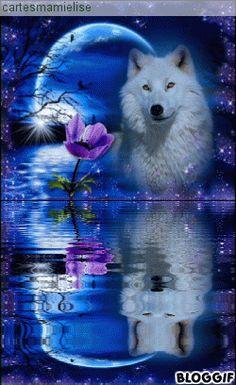 White bear in water Cute Galaxy Wallpaper, Cute Tumblr Wallpaper, Wolf Wallpaper, Cute Disney Wallpaper, Cute Wallpaper Backgrounds, Animal Wallpaper, Wolf Artwork, Space Artwork, Wolf Images