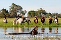 Horse riding safari Macatoo Camp - Botswana Safaris Okavango Delta