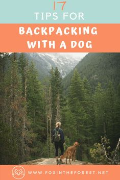 The Complete Guide to Backpacking with Your Dog Everything you need to know to go wilderness camping or backpacking with your dog. Tips and tricks for hiking with a dog. Hiking and camping gear for dogs. How to camp with a dog. Camping Bedarf, Winter Camping, Camping Hacks, Outdoor Camping, Outdoor Travel, Camping Ideas, Camping Stuff, Camping Supplies, Camping Activities