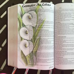 Consider the Lily Bible Journaling Art by Susan Gizinski And why are you anxious about clothing? Consider the lilies of the field, how they grow: they neither toil nor spin, Matthew 6:28