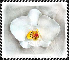 Exotic white Phalaenopsis Orchid pin or hair clip.   http://www.zhibit.org/faelass/flower-sculptures/phalaenopsis-orchid-white