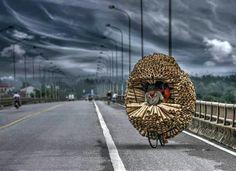 Overloaded - Vietnam