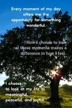 Affirmation - Every moment of my day offers me the opportunity for something wonderful Precious Moments, How I Feel, Choose Me, Positive Affirmations, Opportunity, Positivity, Peace, Joy, In This Moment