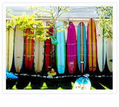 East Hampton surf boards