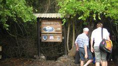 Concha Perla Entrance-Isabela Island  Natural pool  Chance to observe rays,sea lions,marine turtles