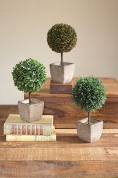 Set of 3 Ball Top Artificial Topiaries- 1 Each in Sq. Tapered Pots