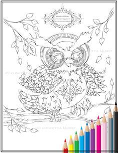 Owl Coloring Page  Autumn Hooty  Owl Art / by concettasdesigns, $3.50