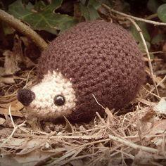 "wecrochetit: "" hedgehog ❥ 4U // FREE PATTERN HERE """