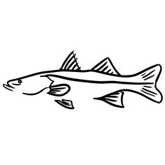 Fish Snook Promotion-Shop for Promotional Fish Snook on Aliexpress.com