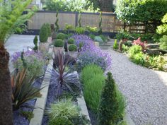 Front Garden Ideas Low Maintenance garden design ideas low maintenance - google search | front garden