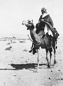 T. E. Lawrence – Wikipedia