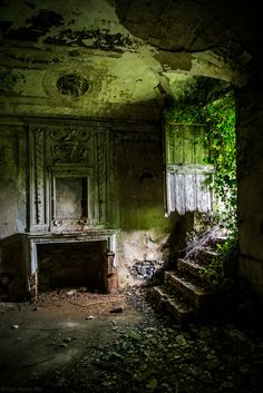Once a beautiful room in an abandoned house , now being taken over by the vegetation