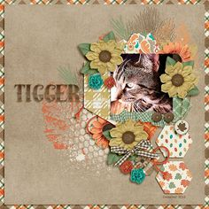 Cathy K Designs-Fall Into Autumn http://www.gottapixel.net/store/product.php?productid=10020942&cat=&page=1 Dagi's Temp-tations Shape Up: Six Sided 2 http://store.gingerscraps.net/Shape-Up-Six-Sided-2.html
