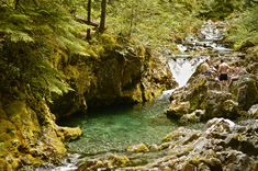 Opal Creek, top 10 hikes for kids