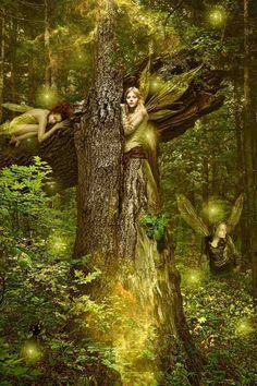≍ Nature's Fairy Nymphs ≍ magical elves, sprites, pixies and winged woodland faeries -Chasity E. Ijames