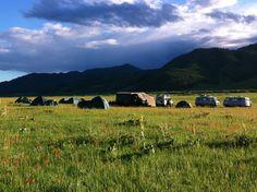 Ténéré Viaggi - Mongolia 2013