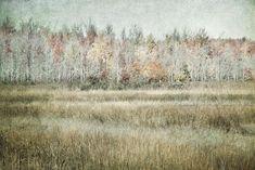 Autumn Landscape Print or Canvas Autumn Home Decor Fall