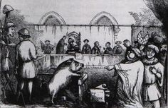 """Medieval trials of animals: """"All over Europe, throughout the middle-ages and right on into the 19th century, animals were... tried for human crimes. Dogs, pigs, cows, rats and even flies and caterpillars were arraigned in court on charges ranging from murder to obscenity....Evans' cases suggest that ... the true purpose of the trials was psychological.... the Greeks and medieval Europeans had in common a deep fear of lawlessness..."""""""