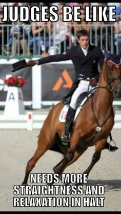 Looks like Lacey in the western equitation week three rail work! Pretty Horses, Horse Love, Beautiful Horses, Equestrian Quotes, Equestrian Problems, Inspirational Horse Quotes, Funny Horses, Dressage Horses, Horse World
