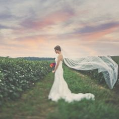 A bridal session that you won't want to miss with enchanting skies and a gorgeous bride!