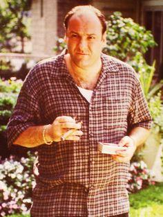 96 Best Sopranos Images On Pinterest Tony Soprano Great Tv Shows