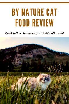 Healthy Cat Food, Lactobacillus Reuteri, Cat Food Brands, Dessert Cookbooks, Fava Beans, Food Out, Essential Fatty Acids