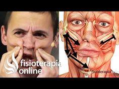 Auto-masaje de la mandíbula y musculatura de la masticación para bruxismo. - YouTube