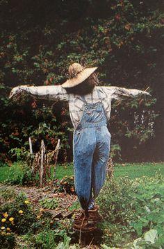 #giardinaggio nel #potager Garden Whimsy, Garden Art, Corn Maze, Natural Garden, Harvest Time, Autumn Theme, Scarecrow Ideas, Country Living, Country Life