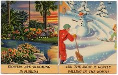 Vintage Linen Postcard Palm Trees Flowers in Florida Snowman Skiers Up North