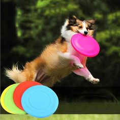 [Visit to Buy] Soft foldable pet Dogs Frisbee toys flying disc training silicone soft Frisbee pet Frisbee toys pet training dog supplies #Advertisement
