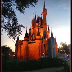 Cinderella Castle at dawn! -  from the Undercover Tourist facebook page