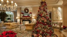 The Peninsula Hotel Have Great Offers for Christmas and New Year's Eve