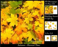 Autumn   Fall   Havest Time 2   3D Decoupage   Insert   Tag on Craftsuprint - View Now!