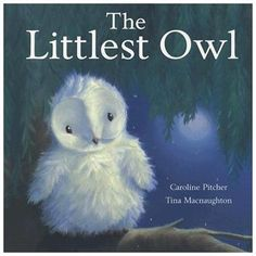 The Littlest Owl- cute book to use as a guest sign in book for owl baby shower